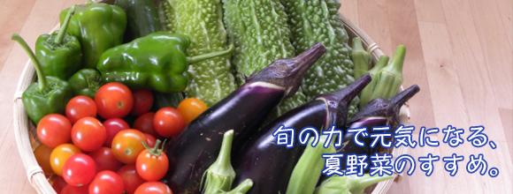 旬の力で元気になる、夏野菜のすすめ。