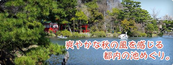 爽やかな秋の風を感じる都内の池めぐり。
