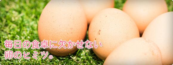 毎日の食卓に欠かせない卵のヒミツ。